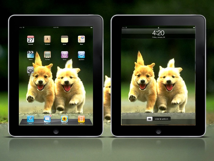 Cool Dog Wallpapers HD Lite screenshot-3