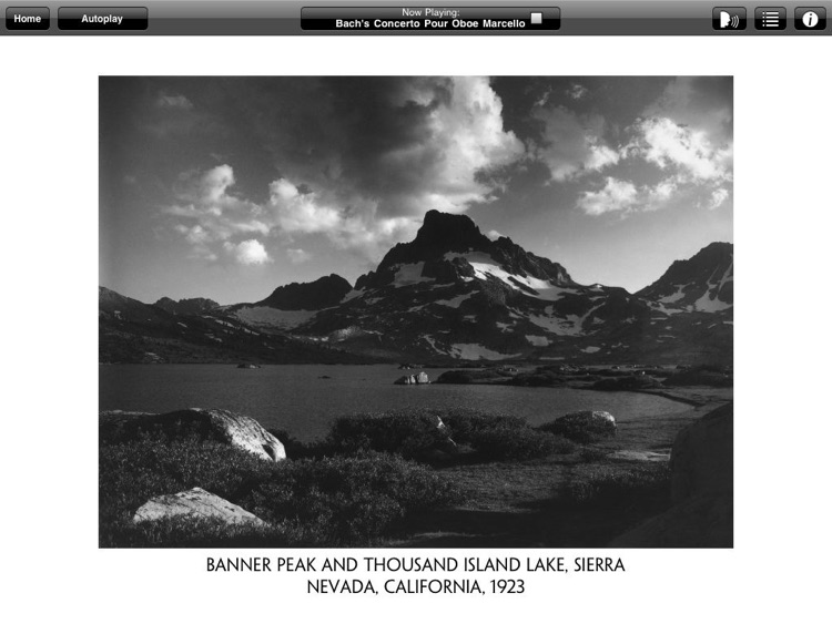 Ansel Adams screenshot-1