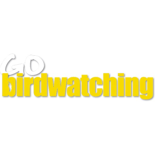 Go Birdwatching magazine