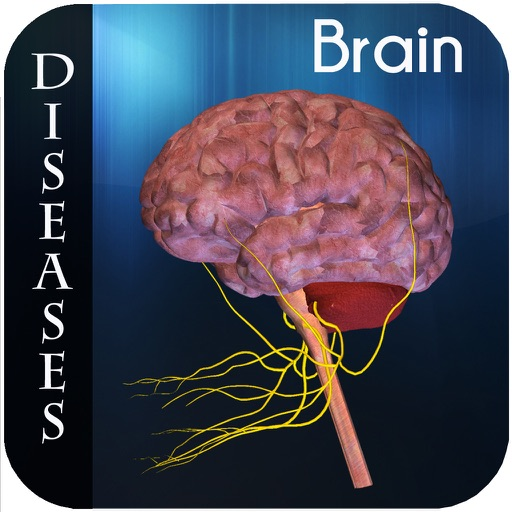 Brain Diseases II