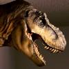 Pet T-Rex Reviews