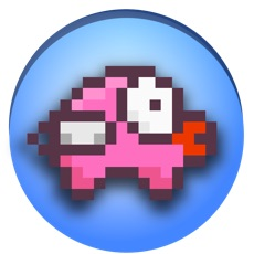 Activities of Flappy Fly Pig