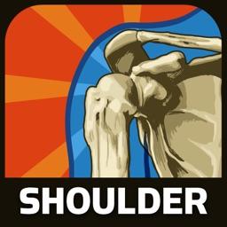 Healthy Shoulder
