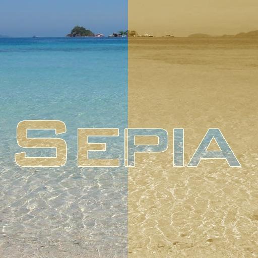 Sepia Picture