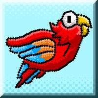 Codes for Aaaaargh!! Cuckoo Birds on the Loose Hack