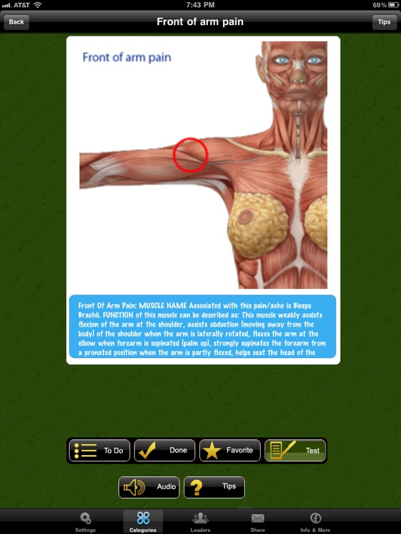 Muscle Trigger Points Doctor for iPad screenshot-2