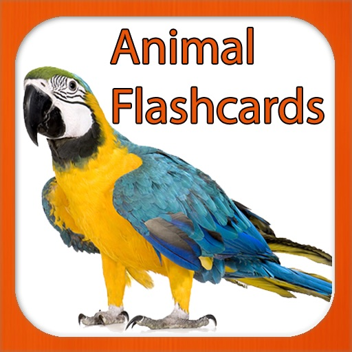 The Animal Kingdom - Flash Cards