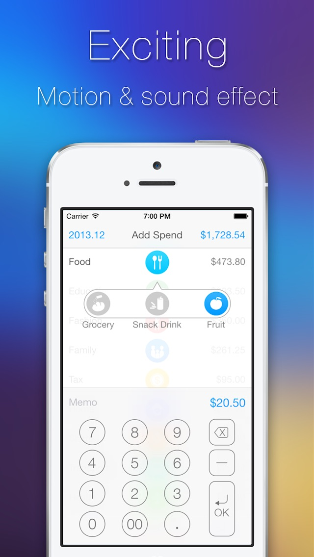 TopSpend - Easy Home Budget Screenshot on iOS