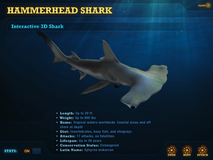 Ultimate Sharks Free screenshot-1