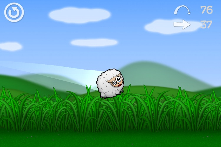 Sheep Cannon !
