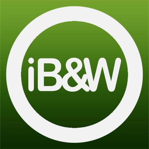 iBet&Win