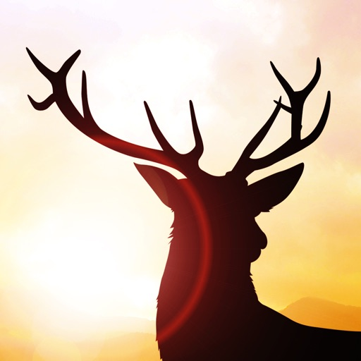 Deer Runner - Escape the Hunter Game