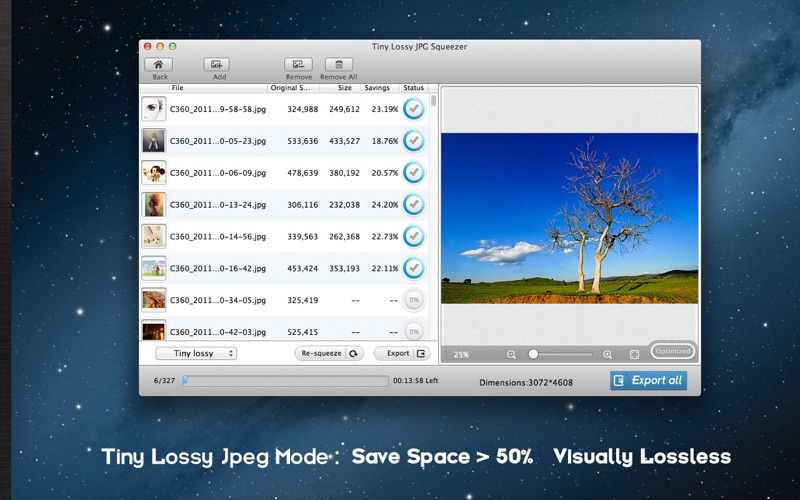 Lossless Photo Squeezer Screenshot