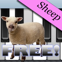 Sheep Piano Free