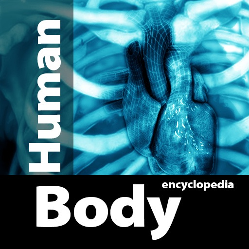 Human Body Anatomy Encyclopedia St