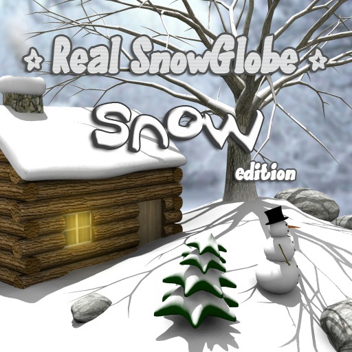 Real SnowGlobe Snow