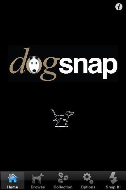 Dogsnap