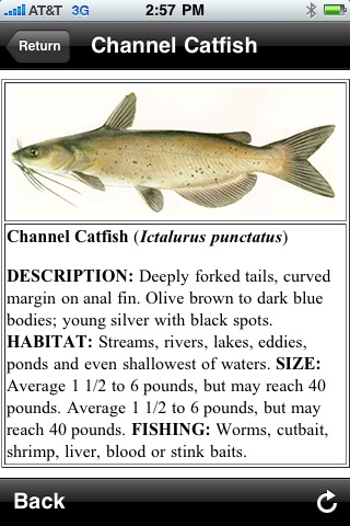 Freshwater Fish ID South