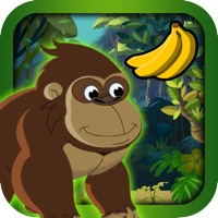 Codes for Kong Run : Race to Avoid Spider Snakes and Birds Hack