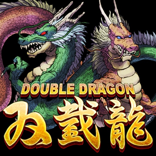 DoubleDragon Review