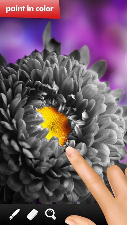 Mono Paint image editor FREE
