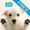 iDog HD(free)