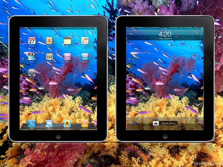 Cool Seabed World Wallpapers HD Lite screenshot-3