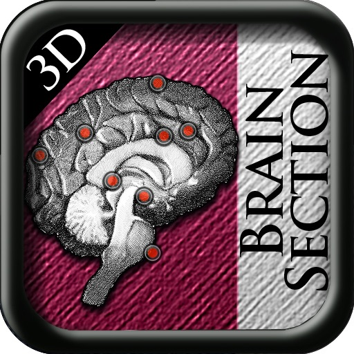 Brain Disection 3D icon