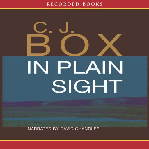 In Plain Sight (Audiobook)