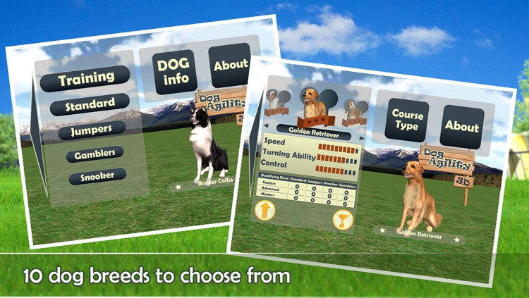 Dog Agility 3D screenshot-1