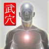 Martial Points 武穴 Pressure Points for Martial Artists – Chinese Ver. iPhone