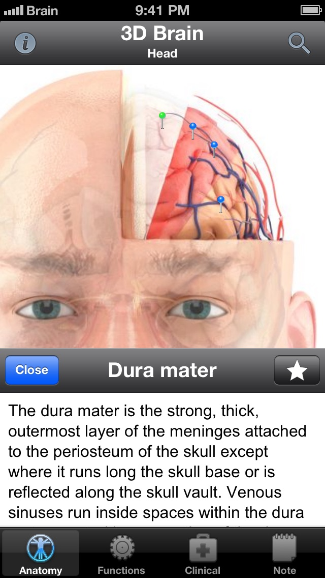 Pocket Brain-インタラクティブ... screenshot1