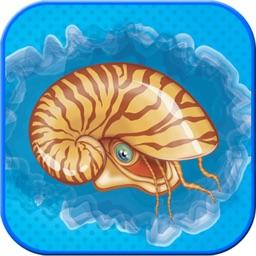 ATLAS: Sea Animals of PLANET Earth