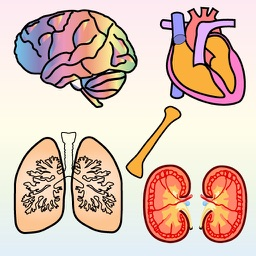 Body Organs 4 Kids - for iPhone and iPod Touch devices