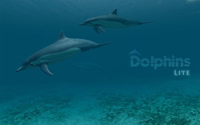 Screenshot #1 for Dolphins 3D Lite