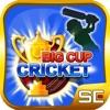 Big Cup Cricket Ranking