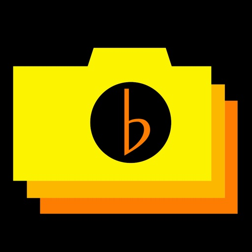 Beat Stop Camera Icon