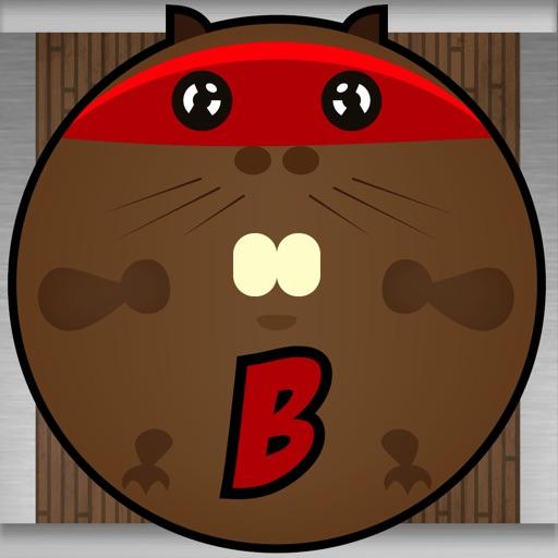 Beaver Balls