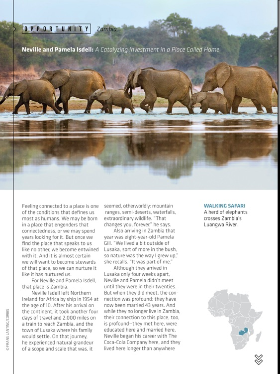 World Wildlife Magazine