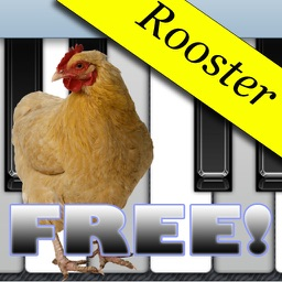Rooster Piano Free
