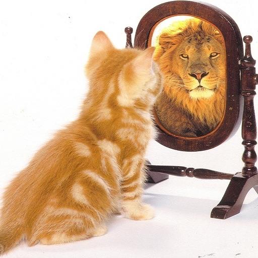Autoestima. Test, Método y Frases