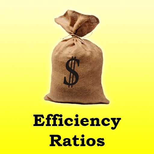 Efficiency Ratios Calculator for CPAs, Investment Bankers, Finance Professionals, and MBAs