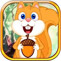 Codes for Squirrel Happy Jump Nut - Fun Acorn Collecting Adventure Hack