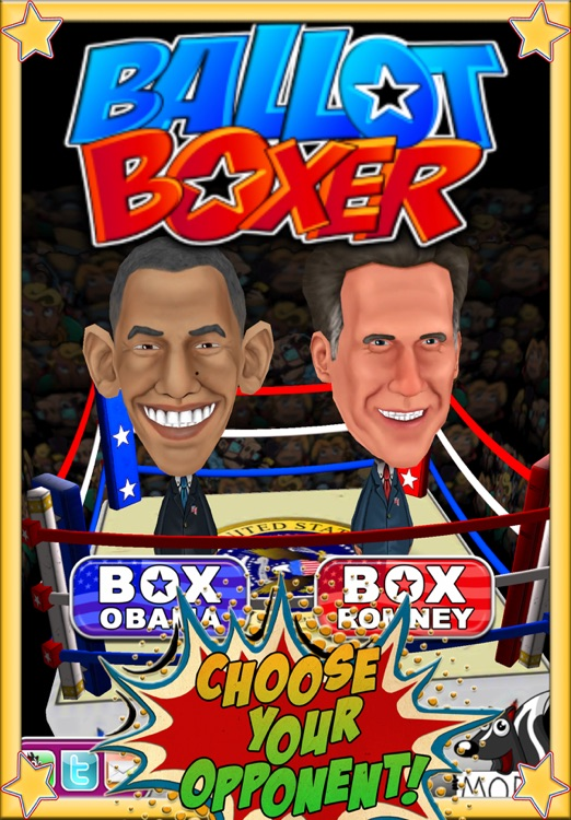 Ballot Boxer screenshot-0