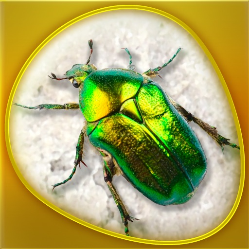 Insecta 360 Gold