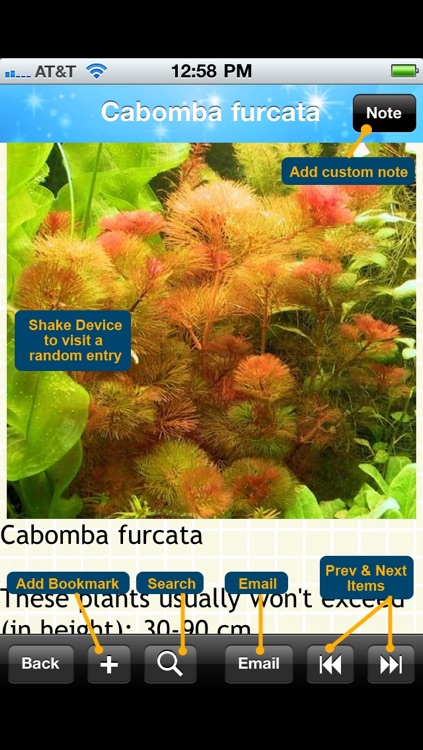 Aquarium Plants Encyclopedia screenshot-4