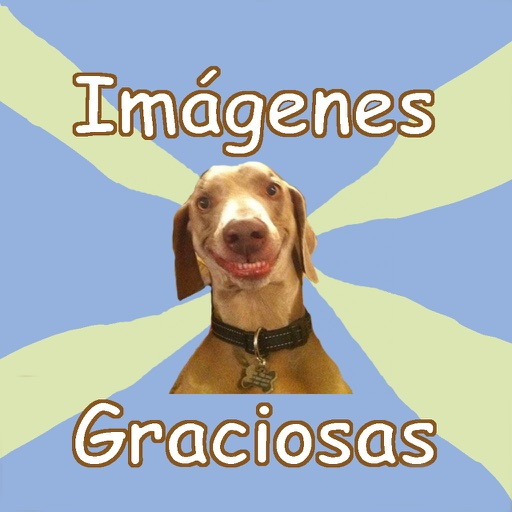 Imagenes Graciosas