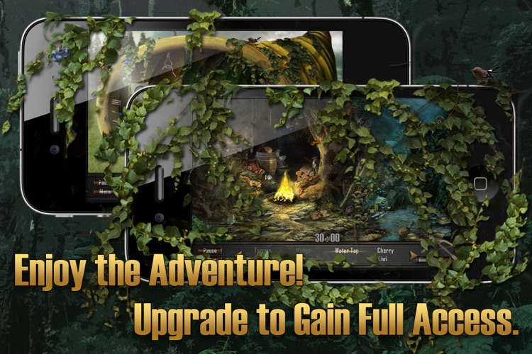 Hidden Objects: The Hunt