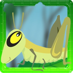 A Cricket Dash And Jump Lite - Don't Stay Or Make Jump Twodots Or It Might Rain With Rocks