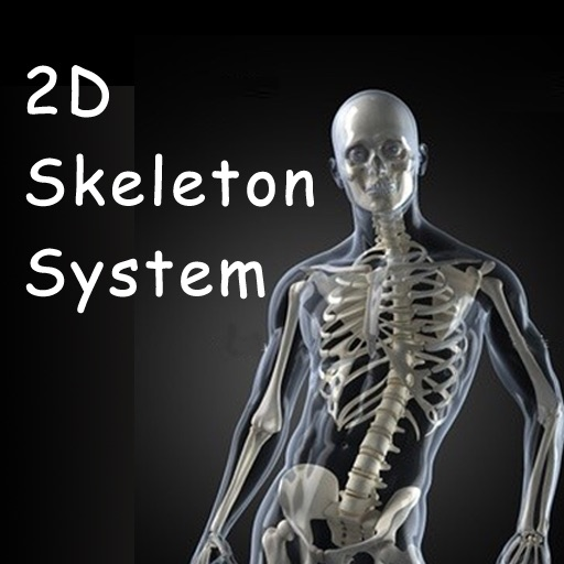 2D/3D Skeletal System for iPad